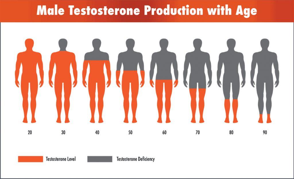 Нисък тестостерон: разбиране на вашата диагноза